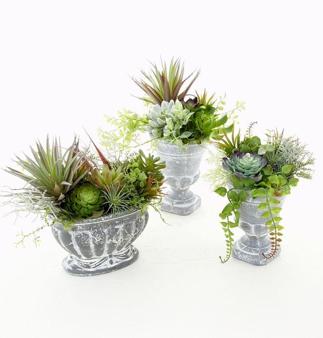 【造花インテリアグリーン】スタイリッシュな多肉植物アレンジD