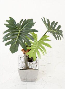 【造花 観葉植物】フィロデンドロンセロームポット