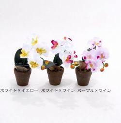 【造花アレンジメント】ミニ胡蝶蘭ポット(パープル×ワイン)
